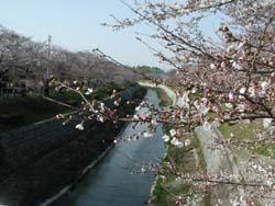 10-01-07-yamazaki-r2